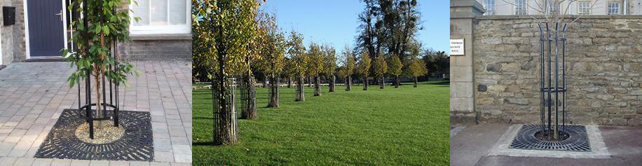 Metal Tree Protection