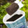 Compost and Growing Media